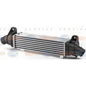 Turbokühler 8ML 376 700-734 HELLA