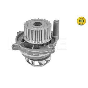 MEYLE Wasserpumpe 06B121011E für VW, AUDI, SKODA, SEAT, PORSCHE bestellen
