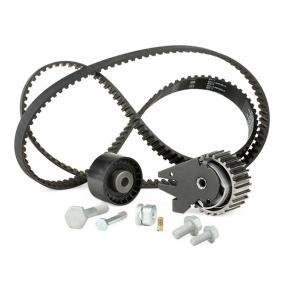 INA Timing Belt Set (530 0624 10) at low price
