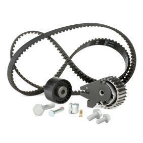 INA Timing Belt Set (530 0624 10) at low price