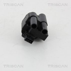 TRISCAN Zündspule 7700100589 für RENAULT, NISSAN, DACIA, TESLA, RENAULT TRUCKS bestellen