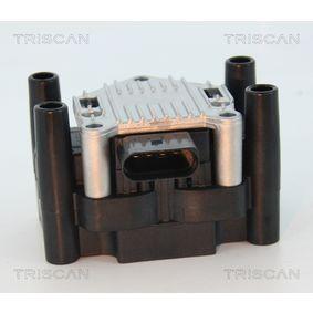 TRISCAN Zündspule 032905106E für VW, AUDI, SKODA, SEAT, ROVER bestellen
