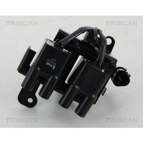 TRISCAN Zündspule 2730102600 für HYUNDAI, KIA, DODGE bestellen