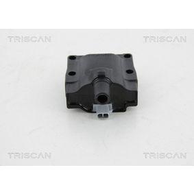 TRISCAN Zündspule 3341080C10 für SUZUKI bestellen
