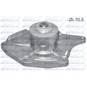 CLIO II (BB0/1/2_, CB0/1/2_) DOLZ Wasserpumpe R217