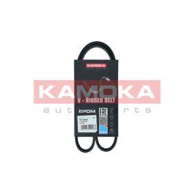 KAMOKA RENAULT TWINGO Scheibenwischer (29017)