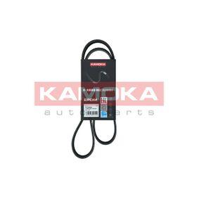 KAMOKA 990022 koop
