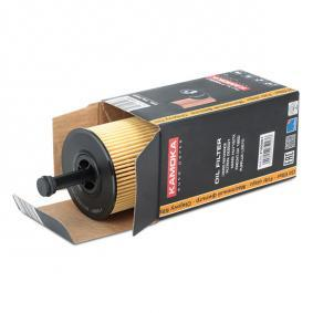 KAMOKA Oil Filter F100901