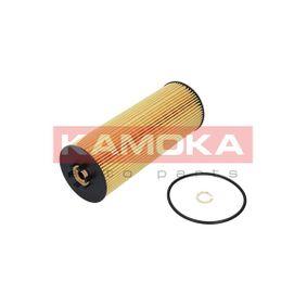KAMOKA F105501