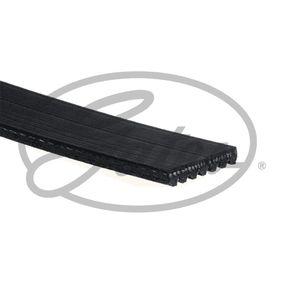Poly v-belt (7PK1645) producer GATES for HONDA CIVIC VIII Hatchback (FN, FK) year of manufacture 09/2005, 140 HP Online Shop