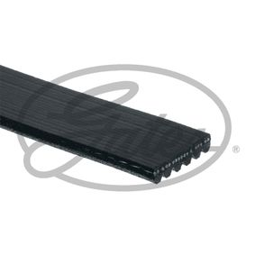 Klinovy zebrovany remen 6PK1140SF GATES