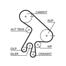 Timing belt kit K015562XS GATES