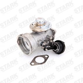 AUDI A4 (8E2, B6) STARK AGR Ventil SKEGR-0770002 bestellen