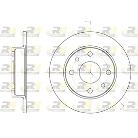 ROADHOUSE Brake rotors set (6110.00)