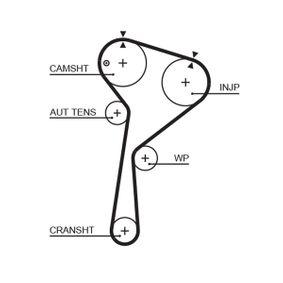 Zahnriemensatz (K025578XS) hertseller GATES für RENAULT CLIO II (BB0/1/2_, CB0/1/2_) ab Baujahr 06.2001, 65 PS Online-Shop