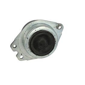 FORTUNE LINE Łożyskowanie silnika 8200181589 dla RENAULT, RENAULT TRUCKS nabyć