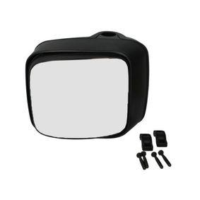Außenspiegel PACOL Art.No - MAN-MR-021 OEM: 81637306512 für MAN kaufen