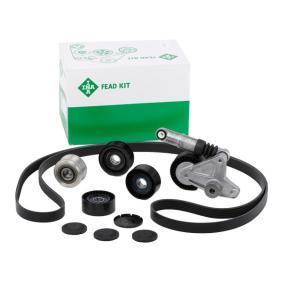 Keilrippenriemensatz INA Art.No - 529 0079 10 OEM: 06H903016S für VW, AUDI, SKODA, SEAT kaufen