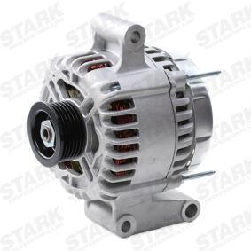 STARK Lichtmaschine SKGN-0320020