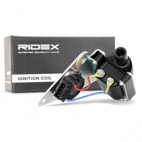 RIDEX 689C0096 Online-Shop