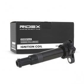 GETZ (TB) RIDEX Unidad de bobina de encendido 689C0134
