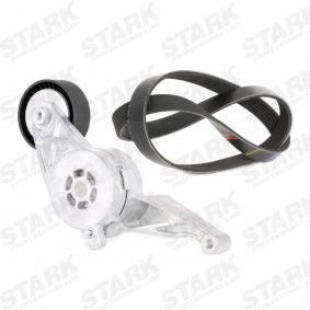 STARK Комплект многоклинов(пистов) ремък SKRBS-1200006