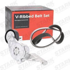 500368902 für RENAULT, FIAT, IVECO, Keilrippenriemensatz STARK (SKRBS-1200006) Online-Shop