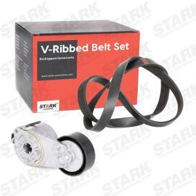 PANDA (169) STARK V-ribbed belt kit SKRBS-1200015