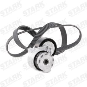 STARK SKRBS-1200022 Keilrippenriemensatz OEM - 8200861569 RENAULT, DACIA, DAEWOO, GATES, RENAULT TRUCKS günstig