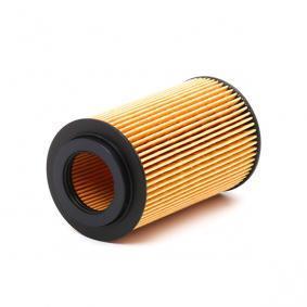 ASHIKA Motorölfilter (10-ECO021)