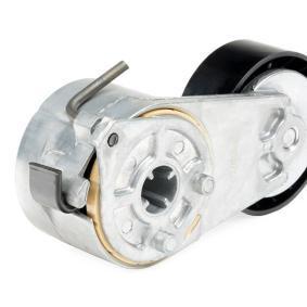 RIDEX FIAT PUNTO Belt tensioner, v-ribbed belt (310T0045)