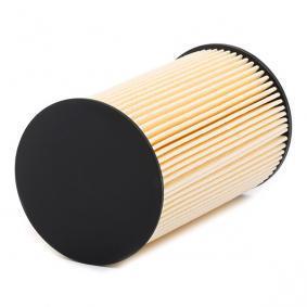 ASHIKA Palivový filtr (30-ECO024)