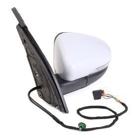 RIDEX 50O0049 Online-Shop