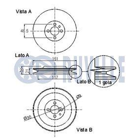 RUVILLE Gelenksatz, Antriebswelle 8200198016 für RENAULT, RENAULT TRUCKS bestellen