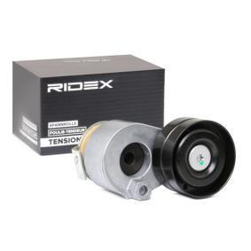 11287512758 für BMW, MINI, AC, Spannrolle, Keilrippenriemen RIDEX (310T0071) Online-Shop