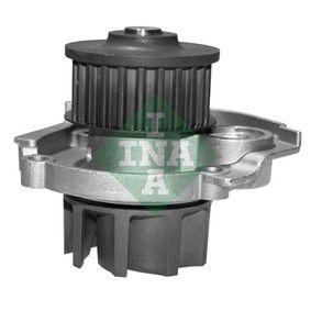 INA FIAT PUNTO Water pump (538 0062 10)