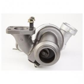 DELPHI Turbocompresor, sobrealimentación 1684949 para FORD, CITROЁN, PEUGEOT, FIAT, VOLVO adquirir