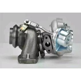 9662371080 für FORD, CITROЁN, PEUGEOT, FIAT, ALFA ROMEO, Turbocompresor, sobrealimentación DELPHI(HNX501) Tienda online