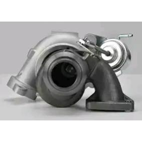 DELPHI HNX501 Turbocompresor, sobrealimentación OEM - 3M5Q6K682DC CITROËN, FIAT, FORD, MITSUBISHI, PEUGEOT, VICTOR REINZ, FORD USA, CITROËN/PEUGEOT, DA SILVA, WILMINK GROUP a buen precio
