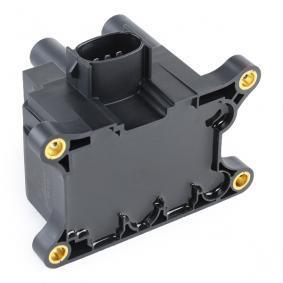 ESEN SKV Unidad de bobina de encendido (03SKV015)