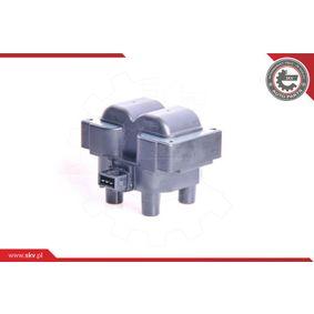 ESEN SKV Ignition coil 03SKV041