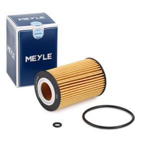 65055046000 für MAN, Ölfilter MEYLE (100 322 0019) Online-Shop