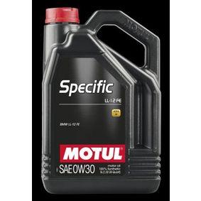 Olio 100% sintetico MOTUL 107302 comprare