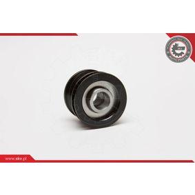 ESEN SKV Generatorfreilauf 045903119A für VW, AUDI, SKODA, SEAT, PORSCHE bestellen
