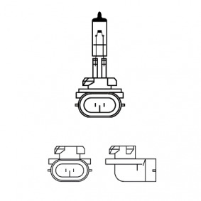 12060C1 Bulb, fog light from PHILIPS quality parts