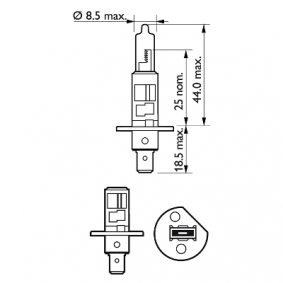 12258VPB1 Glühlampe, Fernscheinwerfer von PHILIPS Qualitäts Ersatzteile