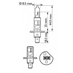 12258VPS2 Glühlampe, Fernscheinwerfer von PHILIPS Qualitäts Ersatzteile
