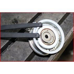 KS TOOLS Wkrętak do nakrętek okrągłych z otworami (150.3205) w niskiej cenie