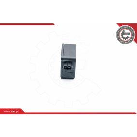ESEN SKV Zentralverriegelung 16SKV320
