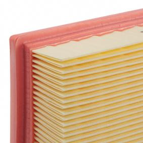 AUTOMEGA PEUGEOT 307 Vzduchovy filtr (180030210)